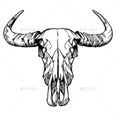 236x236 Very Large Water Buffalo Skull 66 Buffalo Skull