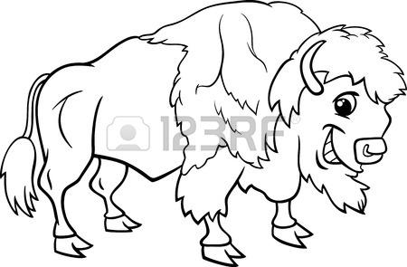 Buffalo Line Drawing
