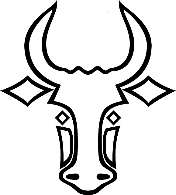 buffalo outline drawing at getdrawings com free for personal use rh getdrawings com