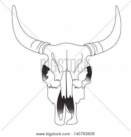 450x470 Cow Skull Images, Illustrations, Vectors