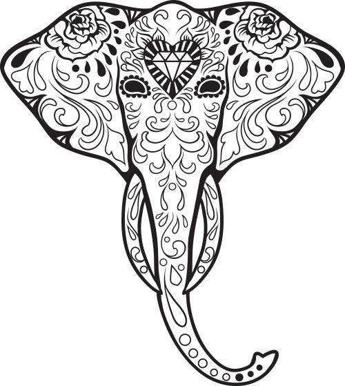 500x559 Drawn Elephant Skull