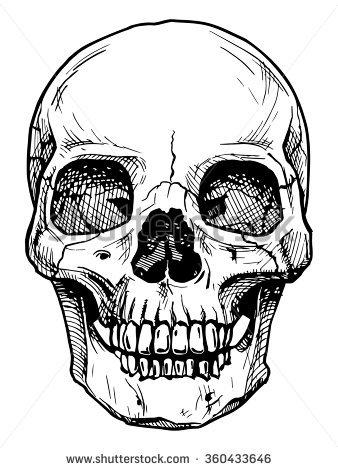 338x470 Drawn Head Skull