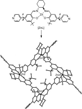 285x379 Assembly Of A [Zn4l4] Macrocycle From Self Complementary {Znl