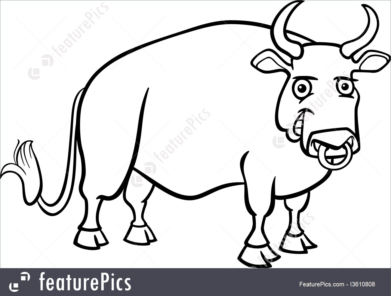 1300x985 Farm Bull Cartoon For Coloring Book Illustration