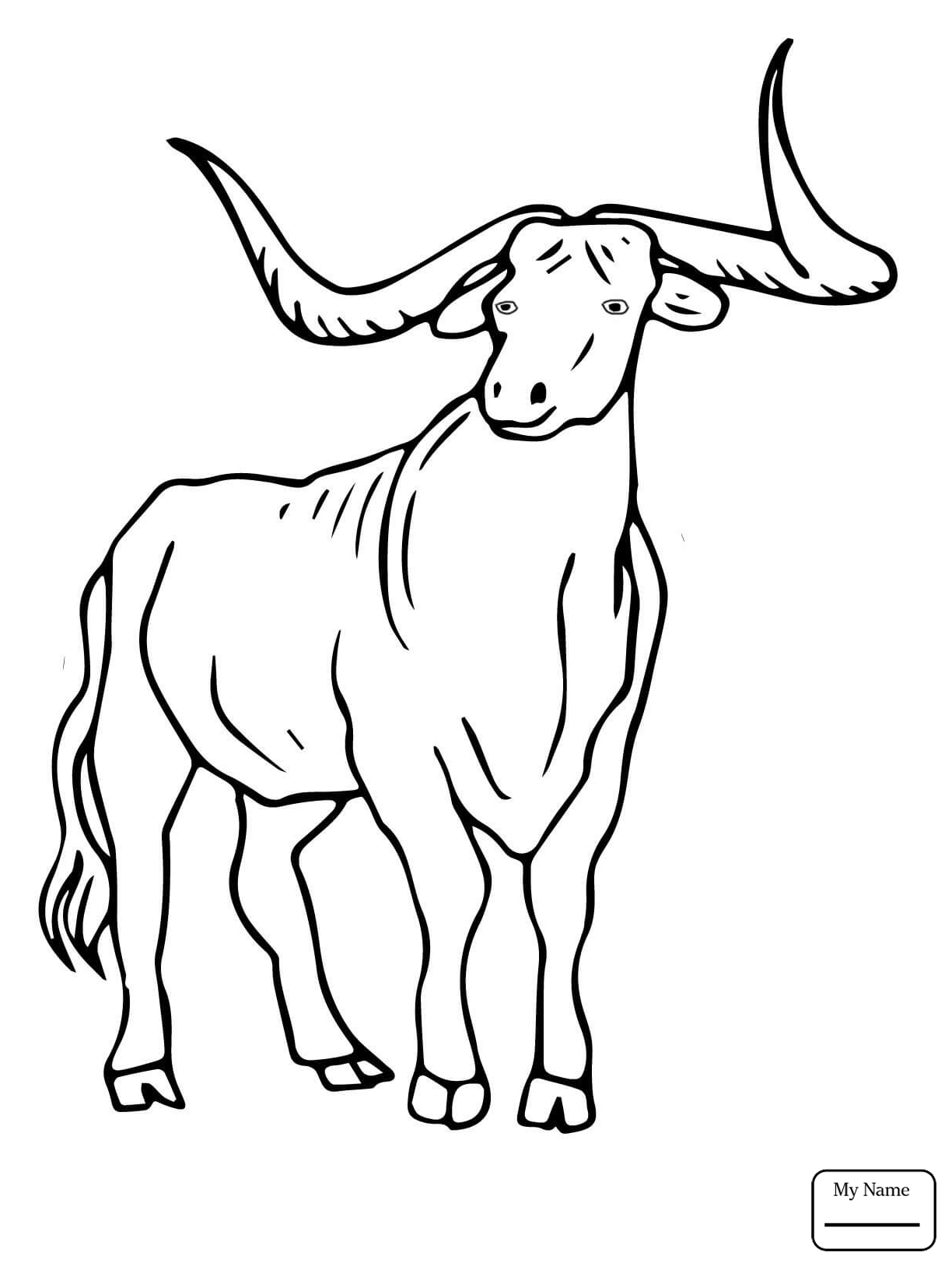 1224x1632 Coloring Pages For Kids Angry Bull Mammals Cartoon Cattle