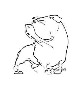 273x300 English Bulldog Drawings Fine Art America