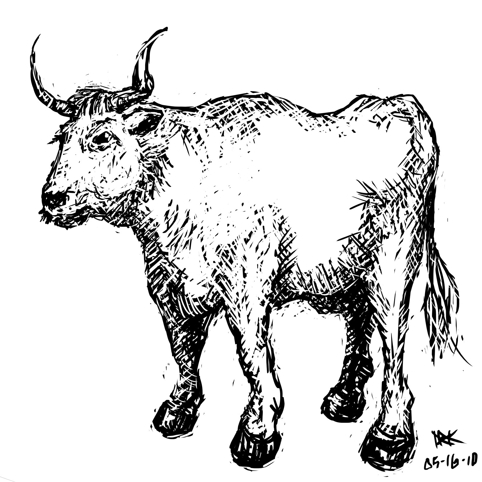 1650x1650 Bull 10,000 Bad Drawings