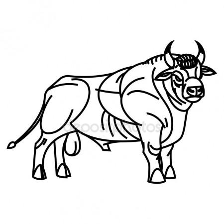 450x450 Drawing Of Standing Bull Stock Vector Annasuchkova