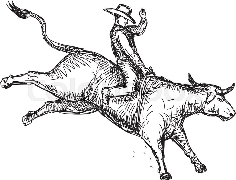 800x609 Drawing Sketch Style Illustration Of Rodeo Cowboy Riding
