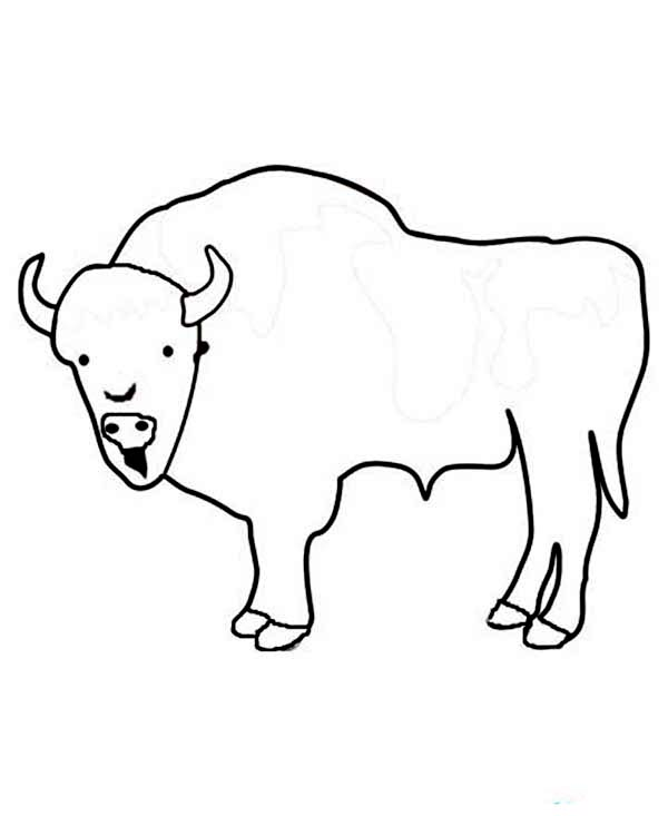 600x733 Kids Drawing Of A Bison Coloring Page Color Luna