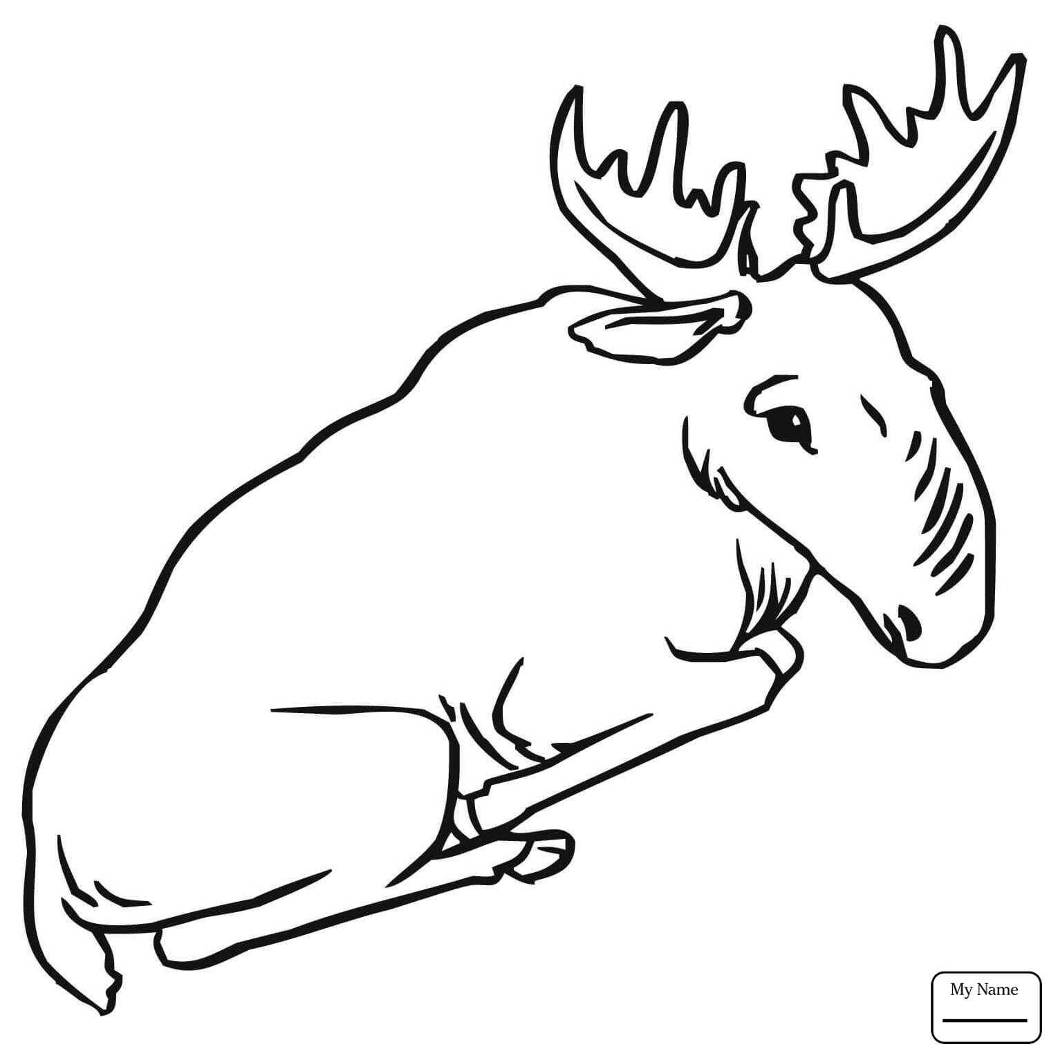 1530x1534 Moose Bull Mammals Moose Coloring Pages For Kids