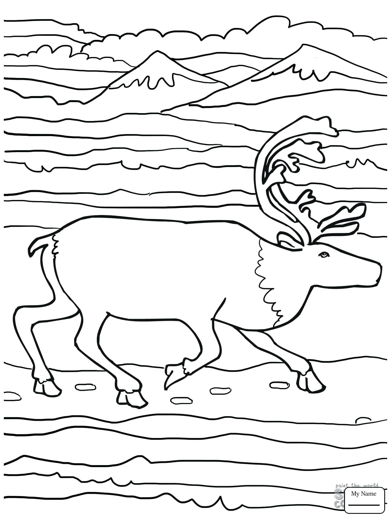 1530x2040 Coloring Elk Coloring Page Mammals Bull And Baby Pages For Kids