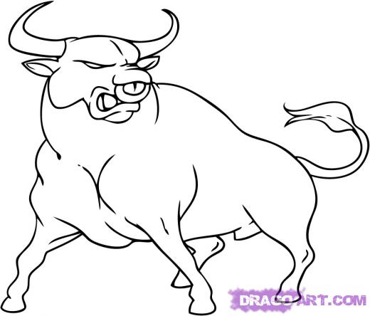 520x444 Image From To Draw A Bull Step