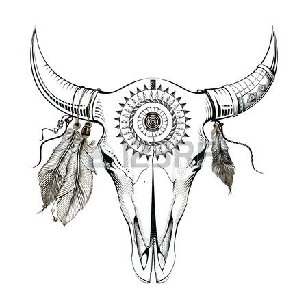 450x450 Bull Skull Stock Photos. Royalty Free Business Images