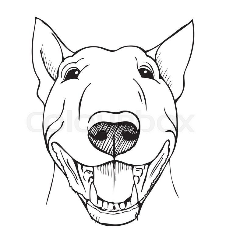 742x800 Bull Terrier, Bull Terrier Funny Face, Black And White Vector