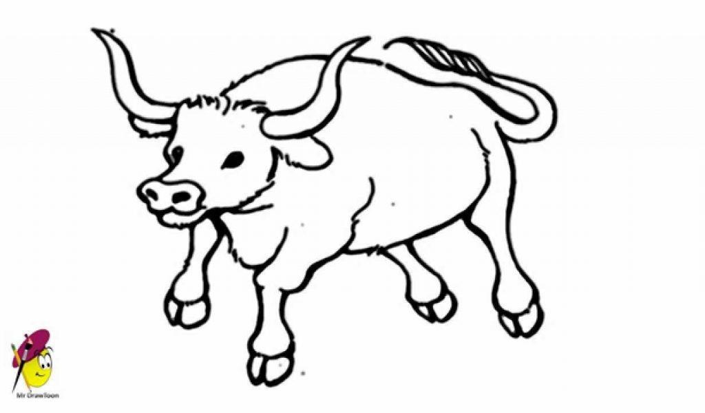 1024x600 Easy Sketch To Bull Face Bull