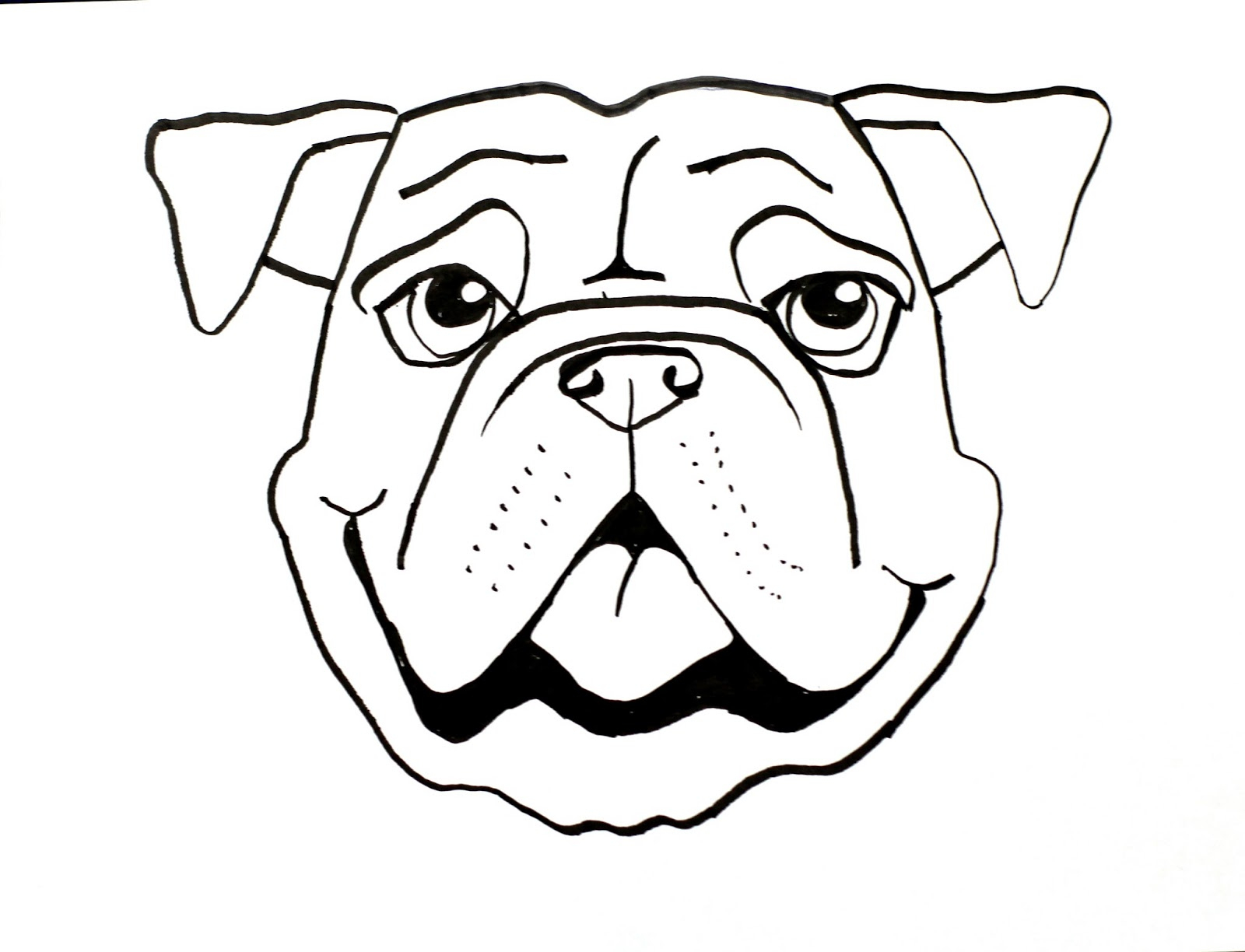 1600x1224 Easy Sketch To Bull Face Drawn Dog Face