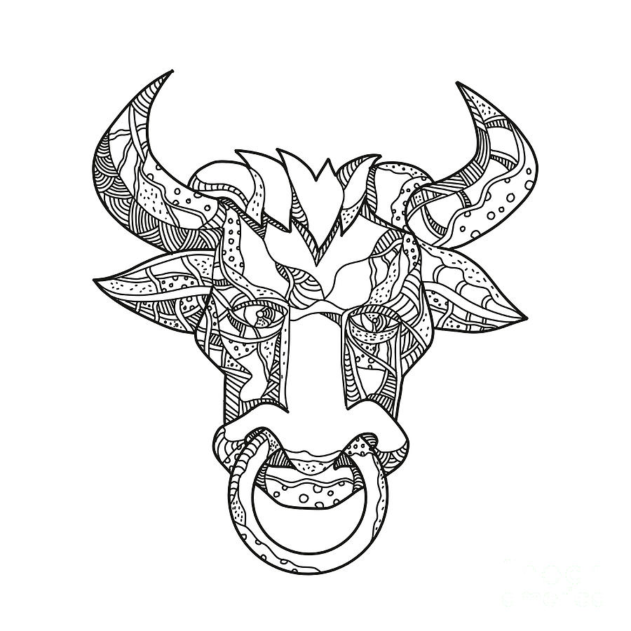 900x900 Pinzgauer Bull Head Front Doodle Art Digital Art By Aloysius