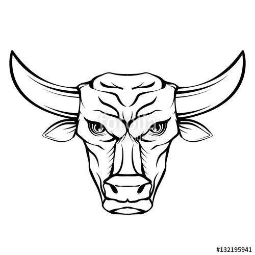 bull head drawing at getdrawings com free for personal use bull