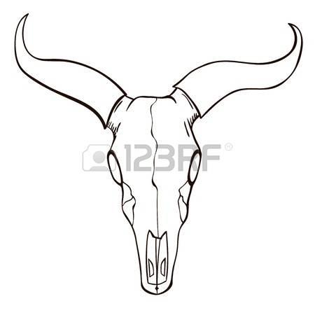 bull horns drawing at getdrawings com free for personal use bull