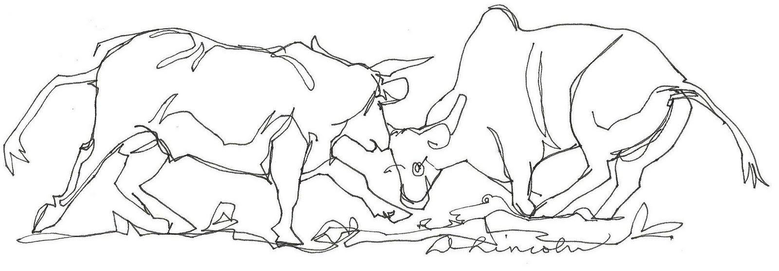 Bull Line Drawing