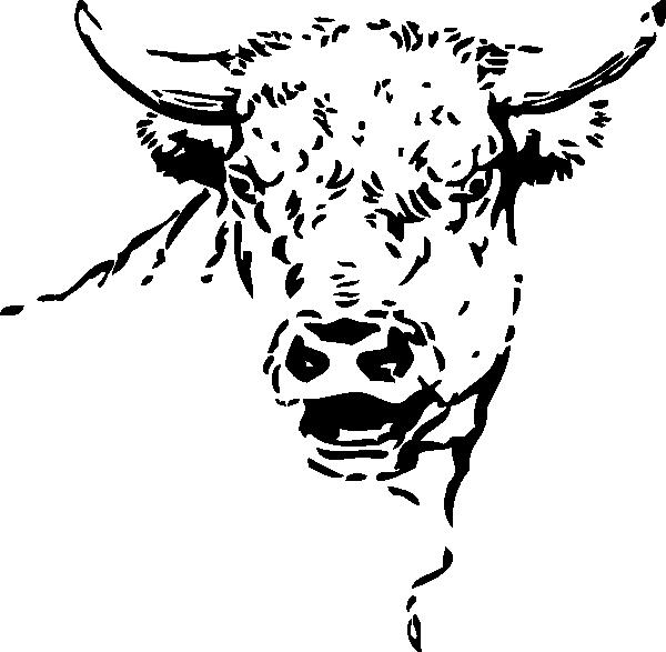 600x587 Bull Head Clip Art