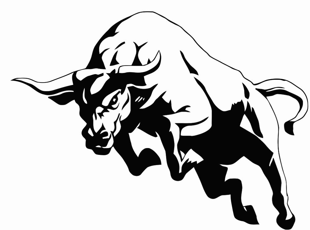 1000x744 The Bull Returns Grow The Top Line.