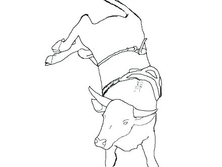 440x330 Bull Riding Coloring Pages Bull Riding Coloring Pages Cowboy