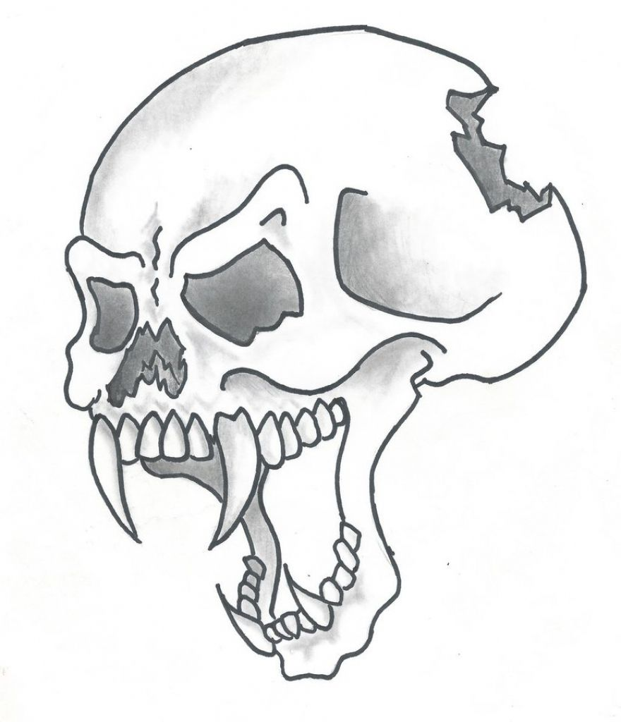 Bull Skull Drawing at GetDrawings | Free download