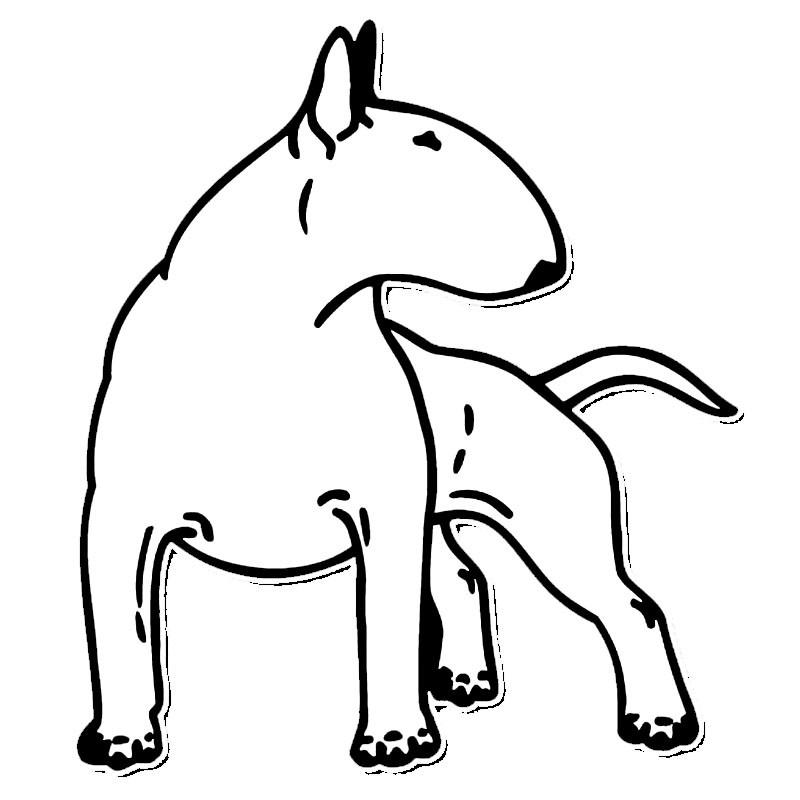 800x800 Cartoon Bull Terrier Car Decal Furbabie Central