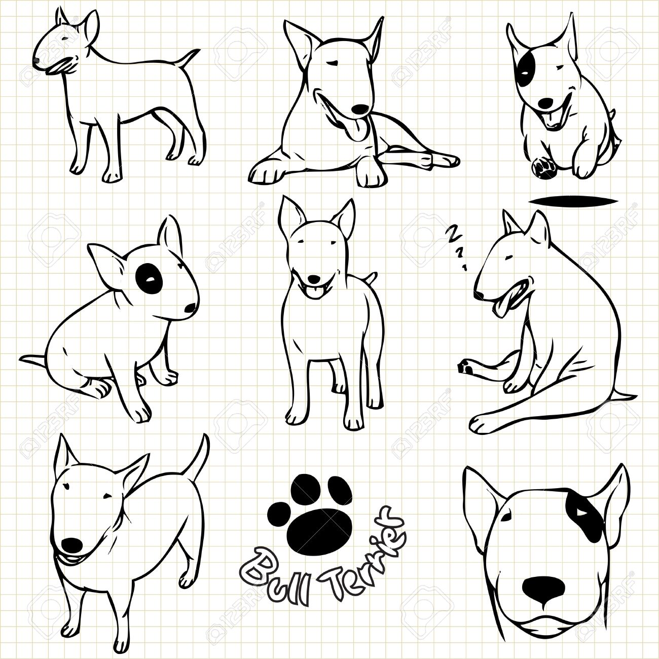 1300x1300 Line Drawing Of Bull Terrier Dog Set On Grid Paper Use