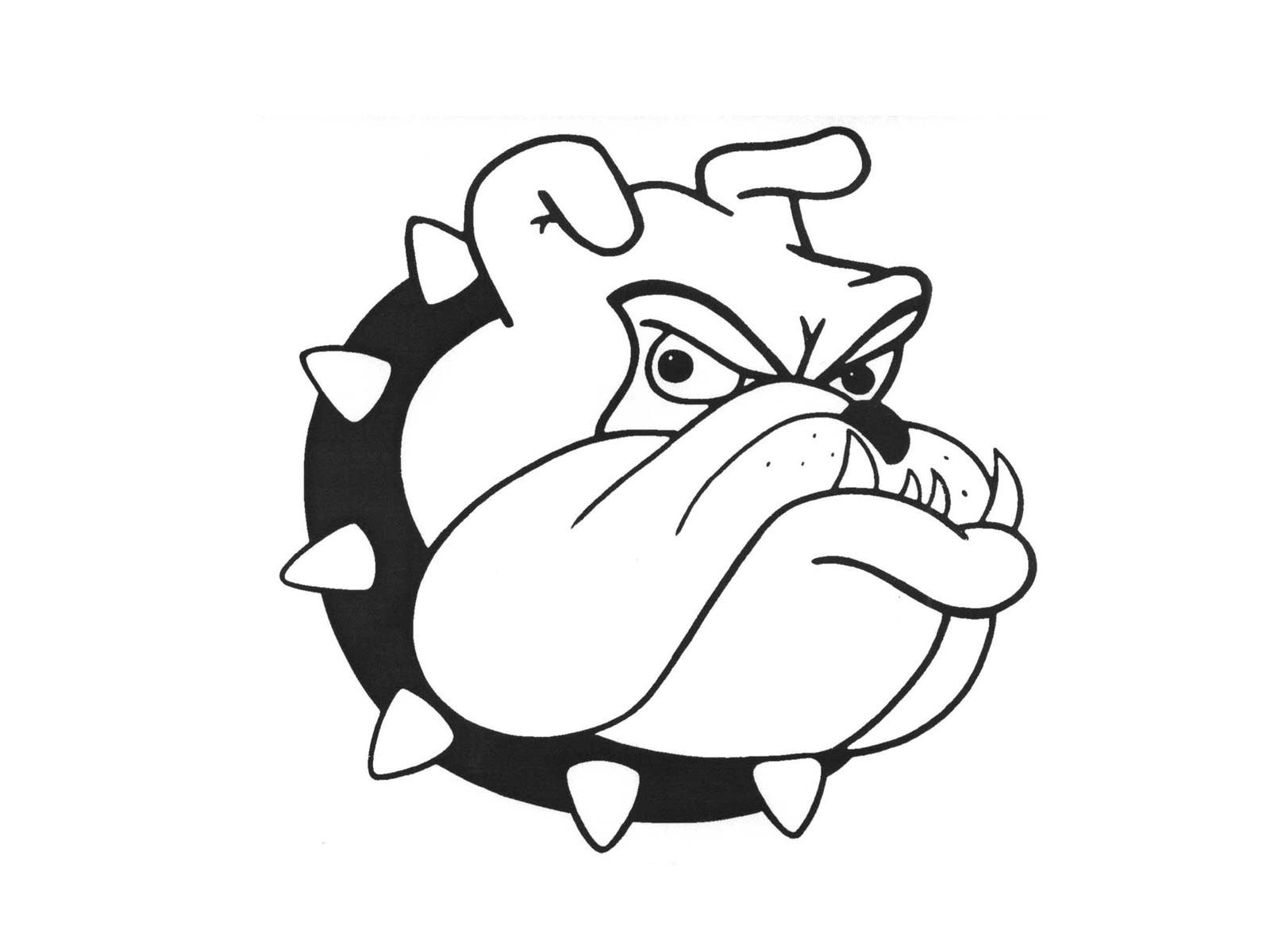 Bulldog Cartoon Drawing