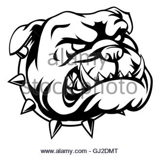 329x320 Cartoon Bulldog School Mascot Stock Photo 36152615