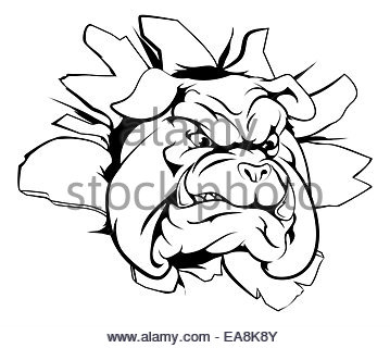 359x320 Cartoon Mean Strong Bulldog Sports Mascot Stock Photo 105585149