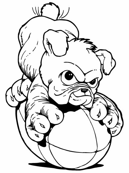427x571 Football Bulldog Drawing Bulldog 29baby Bulldogsmart Designs