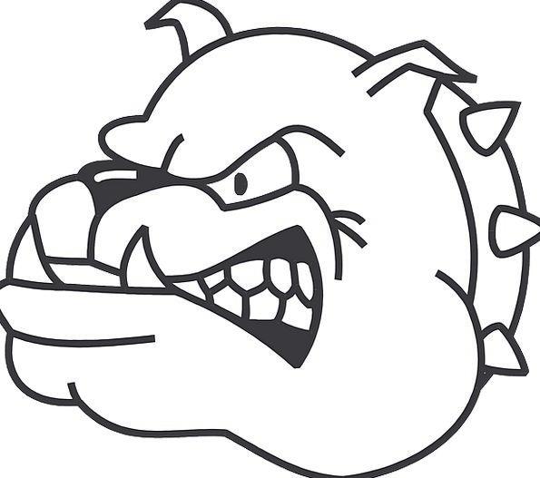 595x527 Dog, Canine, Skull, Angry, Annoyed, Head, Bulldog, Fangs, Growling