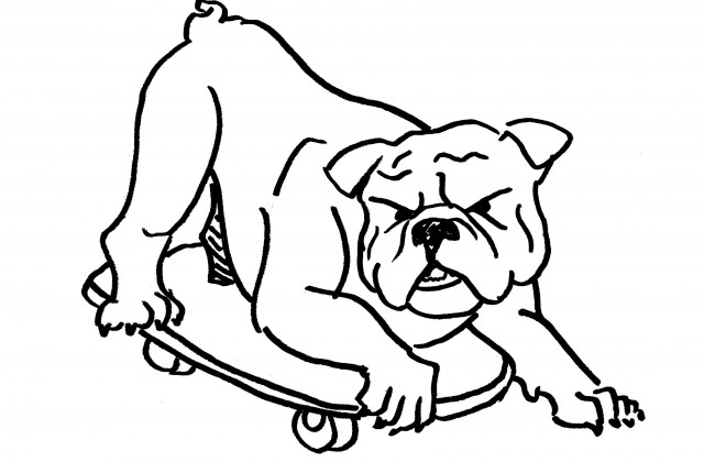 640x420 Tag For How To Draw A Bulldog Drawing Plants With Simple Forms