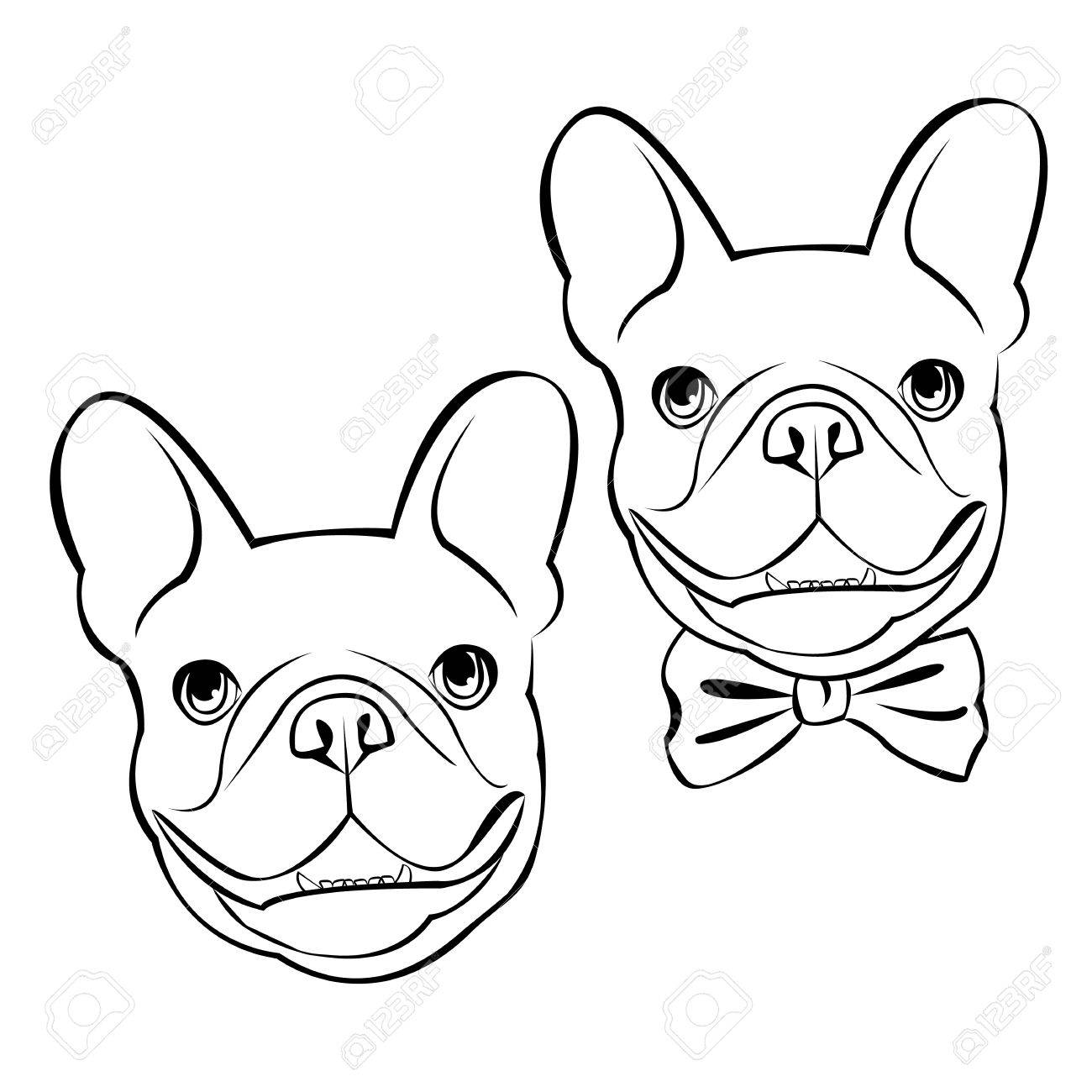 1300x1300 Bulldog, Dog, Animal, French, Vector, Illustration, Pet, Breed