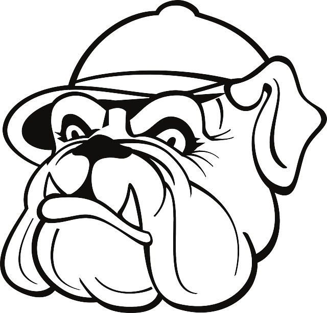 640x612 Outline, Drawing, Dog, Hat, Cap, Bulldog,