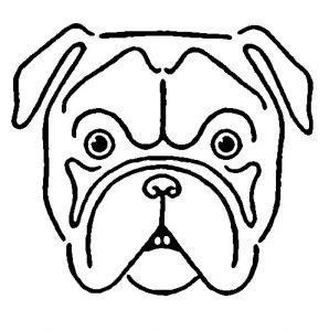 298x300 Cute Bulldog Drawingkindofpets Kindofpets