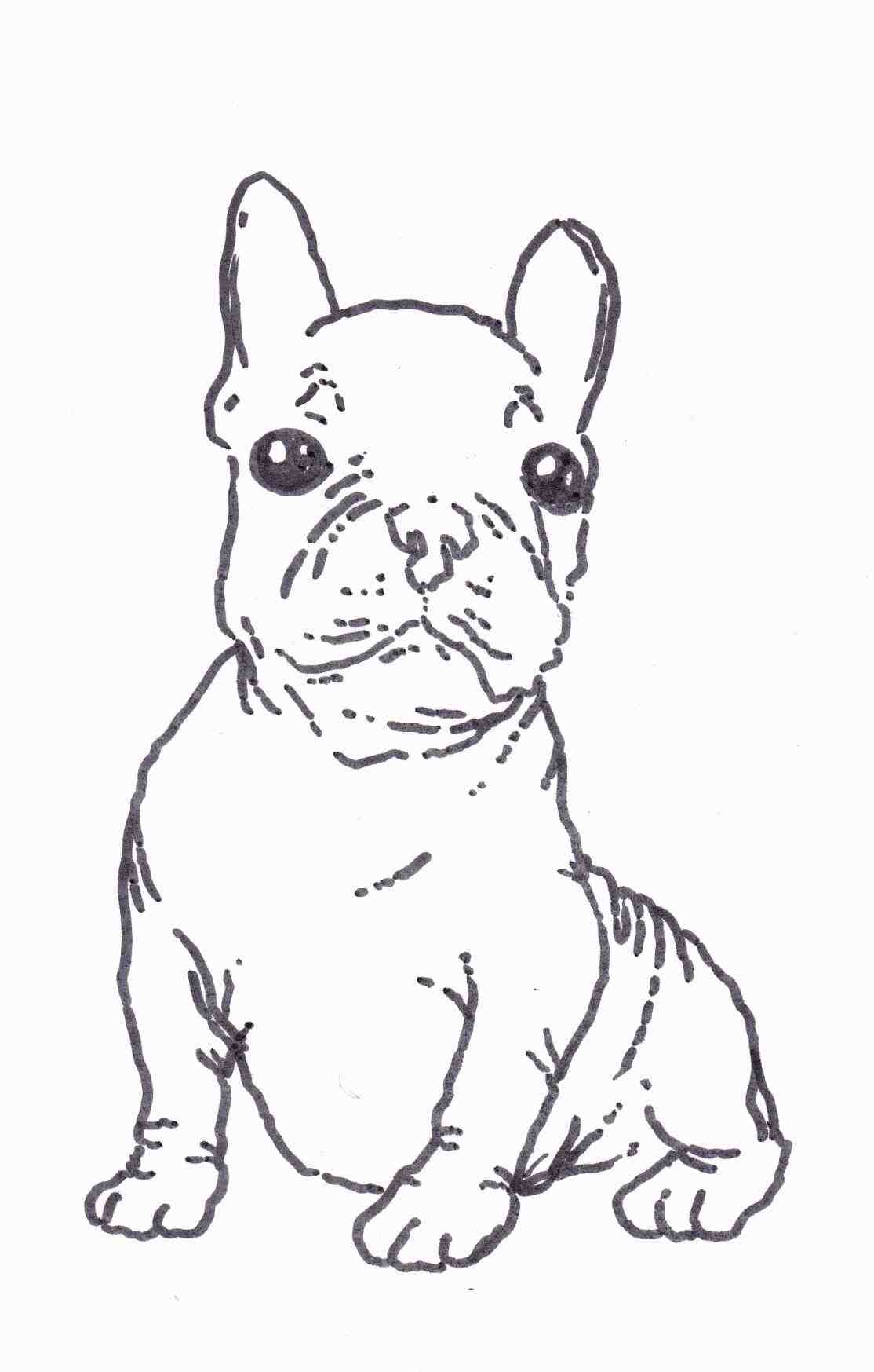 1114x1747 French Bulldog Drawing Step By Step Animalsee.club