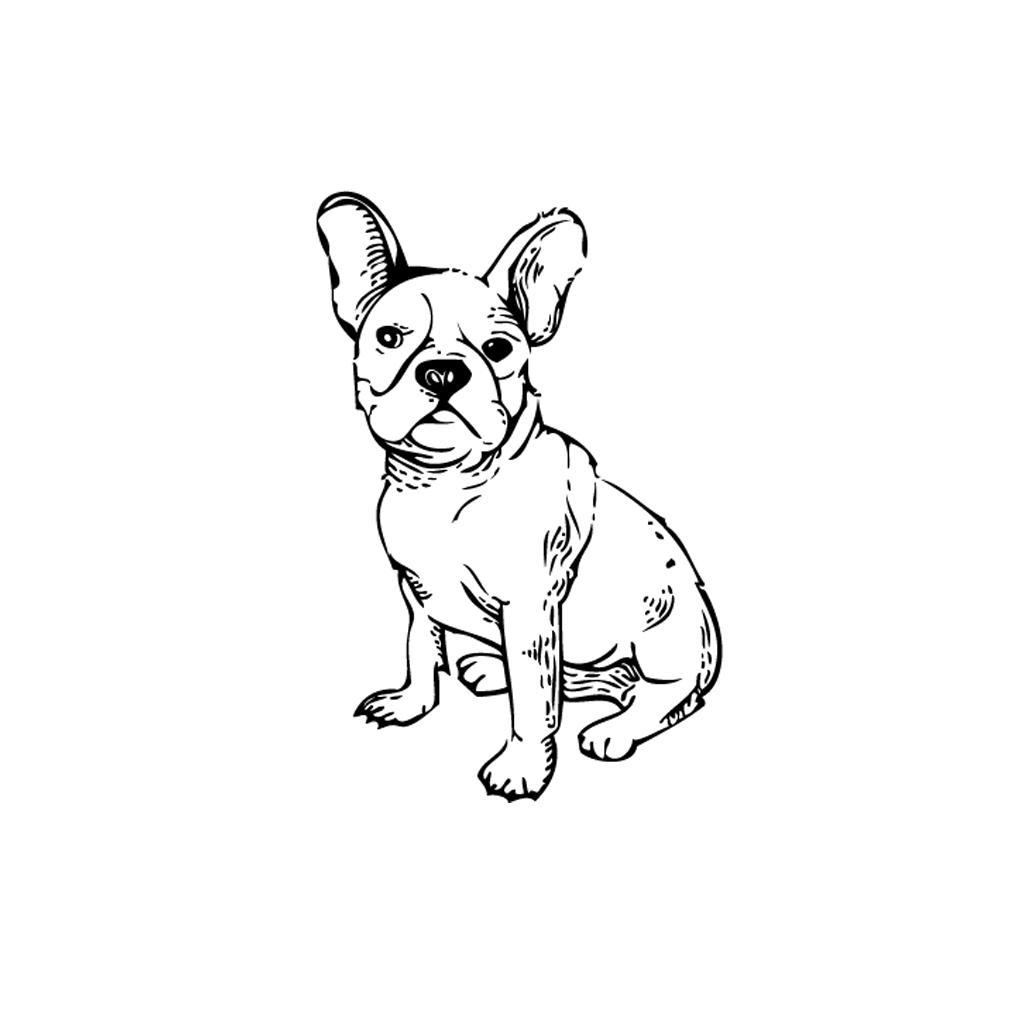 1024x1024 French Bulldog Line Drawing