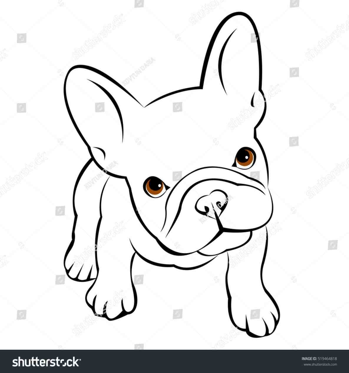 1185x1264 French Bulldogs Drawings