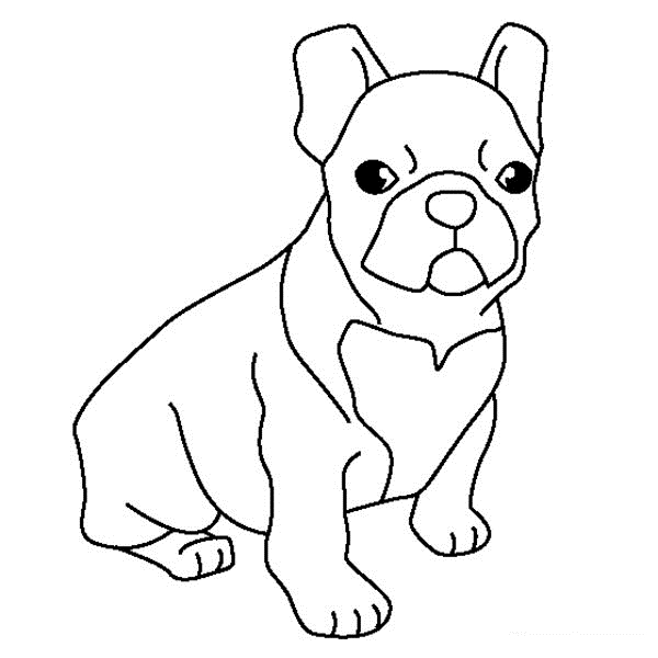 600x600 Happy Bulldog Coloring Pages Perfect Coloring