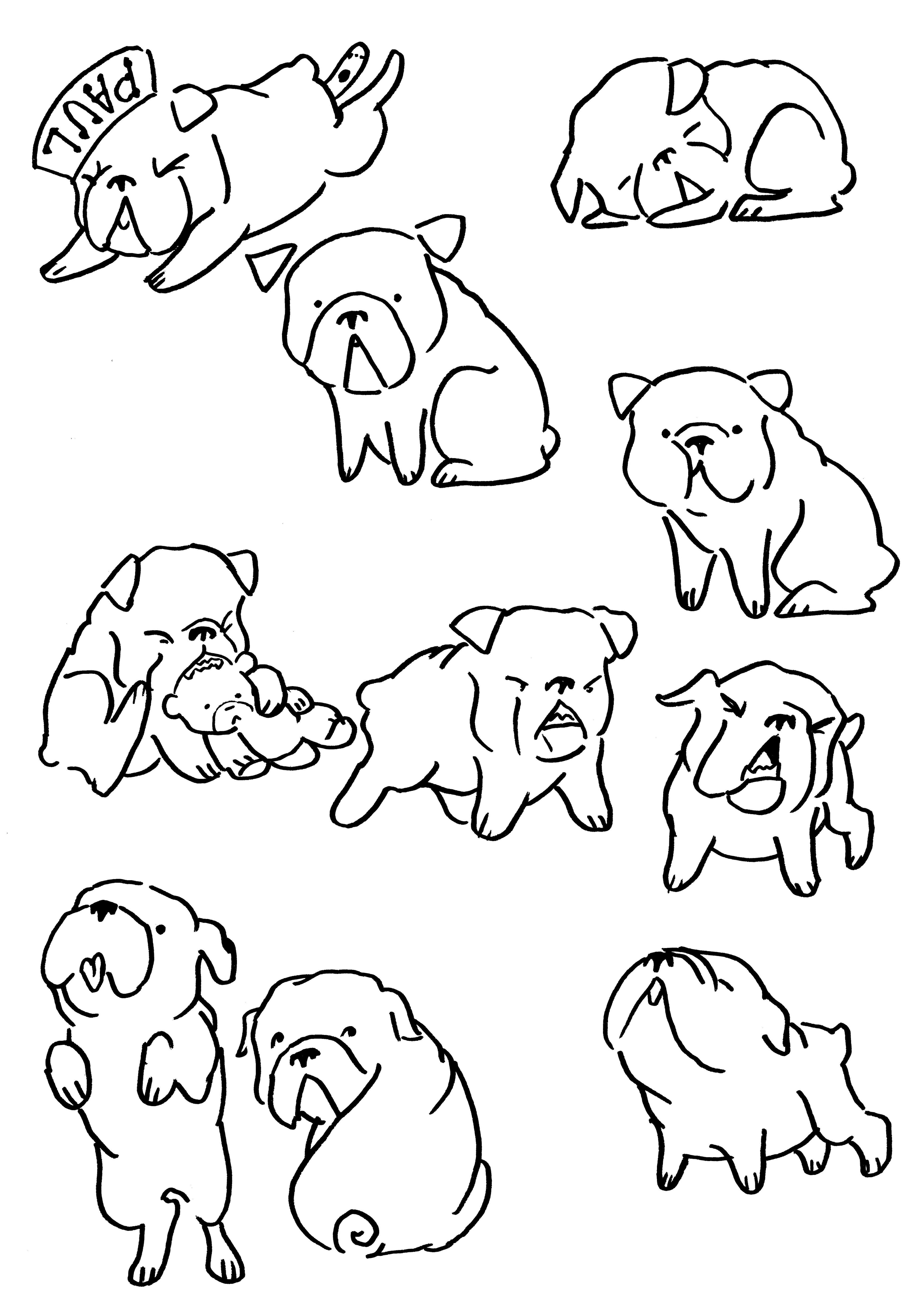 3900x5562 How To Draw A Mean Bulldog