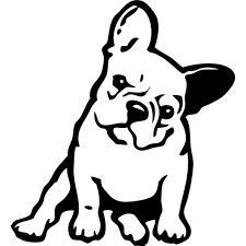 225x225 Ooh La La, French Bulldog