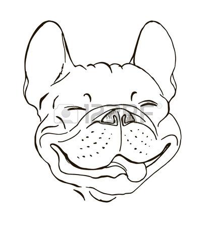 428x450 English Bulldog, Smiling Dog Face, Portrait, Sketch, Black