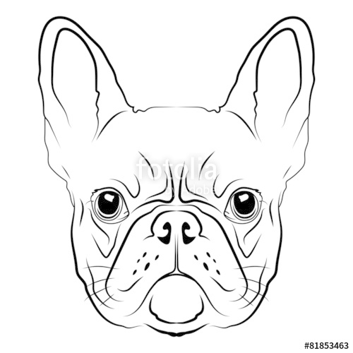 500x500 French Bulldog Head Logo Or Icon In White. Stock Image