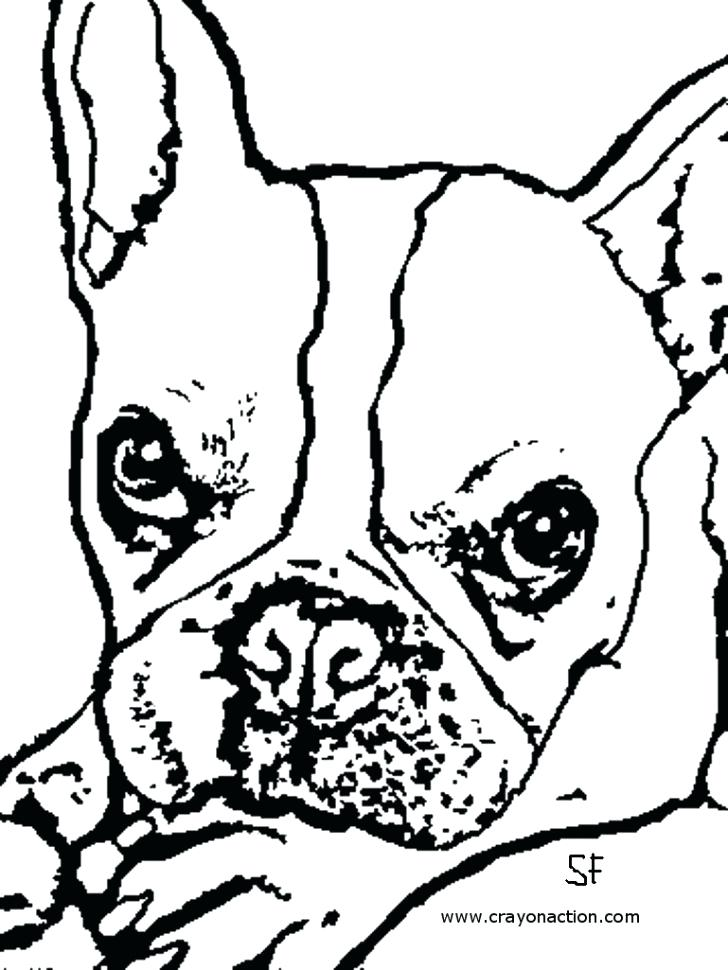 728x970 Georgia Bulldogs Coloring Pages New French Bulldog Coloring Pages