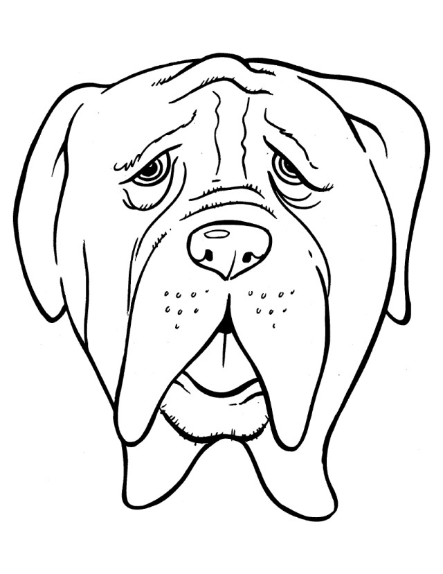 640x828 Head Bulldog With Old Age Coloring Page